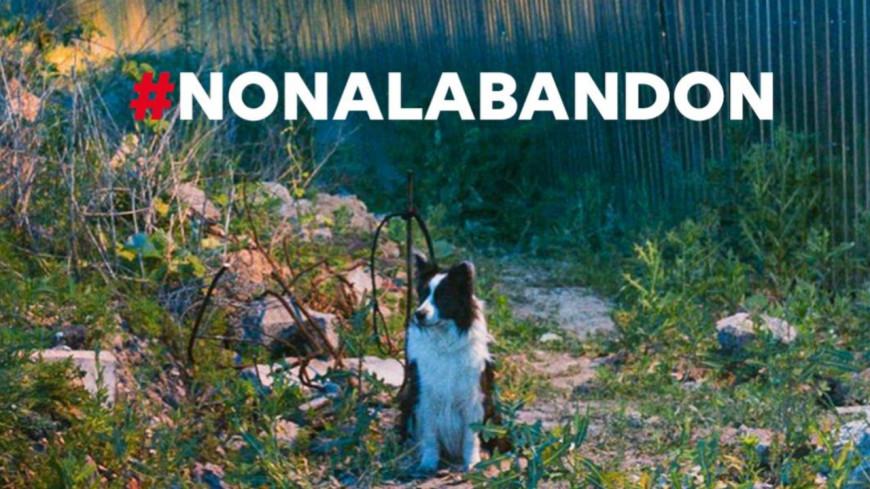 30 Millions d'Amis : La campagne choc contre l'abandon des animaux !
