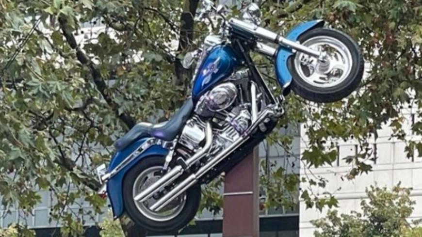 Johnny Hallyday : la statue en son hommage dévoilée