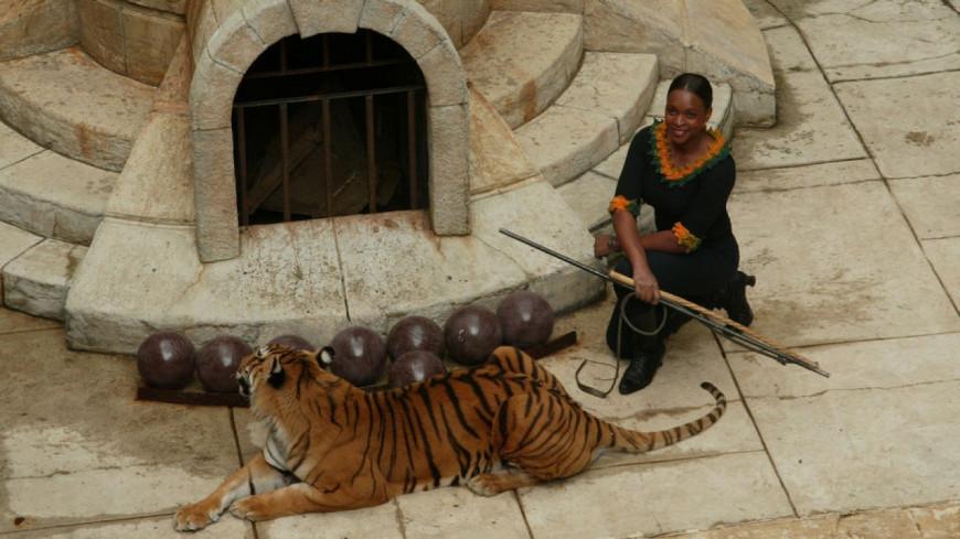 Fort Boyard : Les tigres sont de retour !