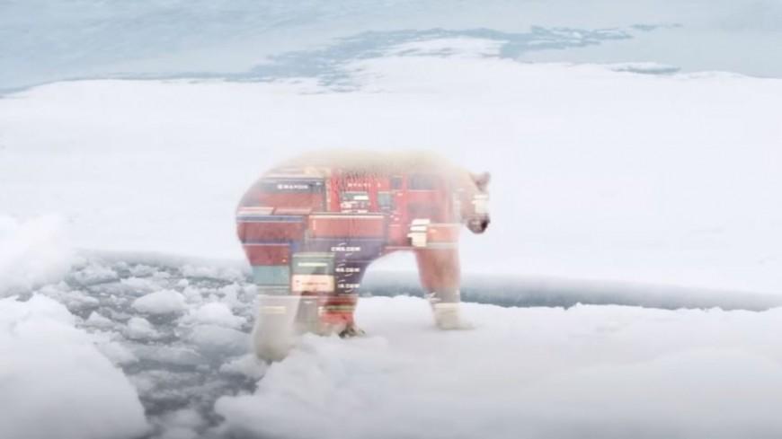 """Christophe Maé est """"L'ours"""""""